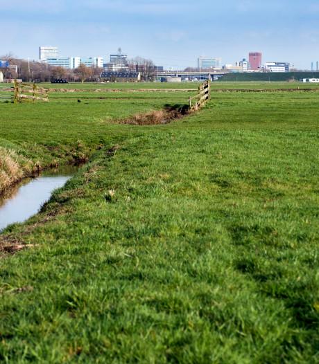 Bouwen in polder Rijnenburg bij Utrecht? Pas op voor natte voeten
