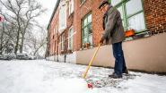 """Oproep stadsbestuur: """"Ruim sneeuw voor eigen deur zélf op"""""""