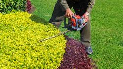Je tuin onderhouden wordt een makkie met deze onmisbare tools