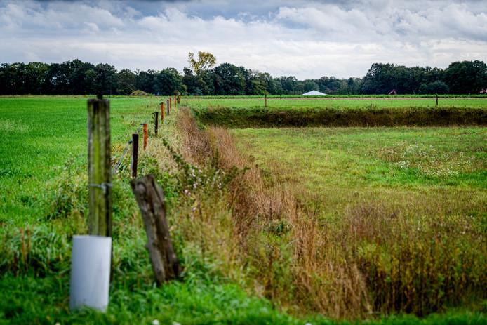 De - illegaal - afgegraven Loo Es wordt in oorspronkelijke staat hersteld.