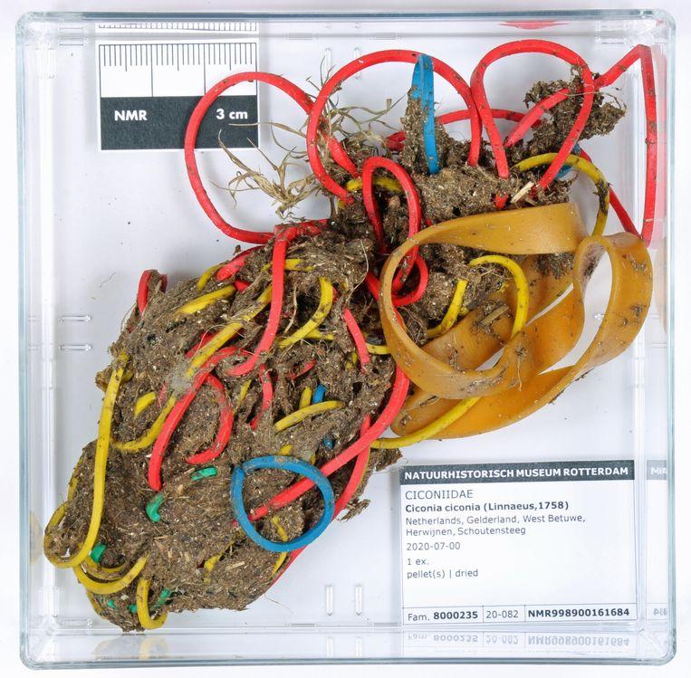 Braakbal van een ooievaar (Ciconia ciconia). Beeld Natuurhistorisch Museum Rotterdam