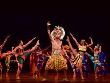 Miljoen bezoekers voor The Lion King in Circustheater