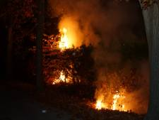 Heg in brand vlakbij gastank in Kaatsheuvel