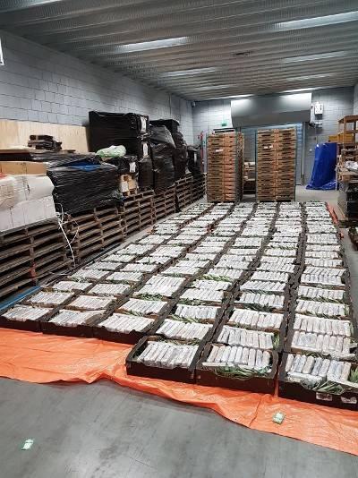 duizend-kilo-coca%C3%AFne-tussen-fruit-gevonden-in-oudenbosch