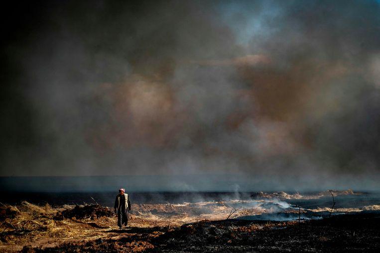 Verwoeste akkers zijn overal in de grensregio van Syrië, Irak en Turkije, zoals hier bij het dorp Al-Qahtaniyah. Beeld AFP