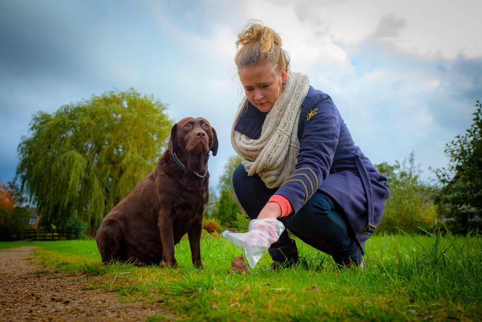 Hondendrollen moeten door het baasje worden opgeruimd.
