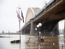 Hoogwatergolf bereikt bijna hoogtepunt: Waal- en Rijnkade ontruimd, fietsroutes afgesloten, kuddes verplaatst