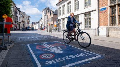 Na acht maanden proefdraaien: overtreders fietszone riskeren nu boete