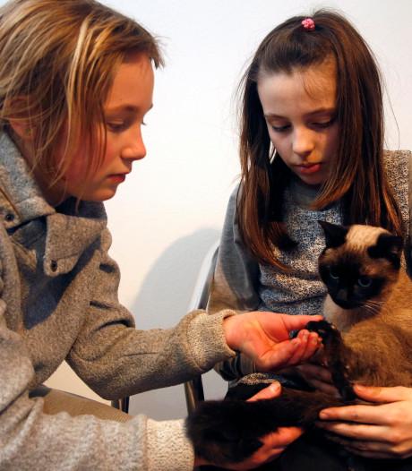 'Puma' weer thuis na avontuur in Sluiskiltunnel