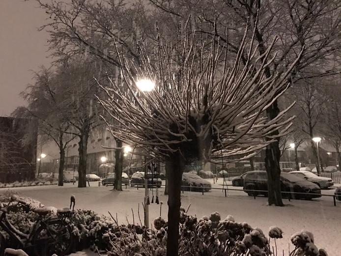 Sneeuw in Breda.