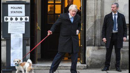 LIVE. Eerste resultaten exitpoll voorspellen dat Boris Johnson - groot voorstander van brexit - de Britse verkiezingen wint