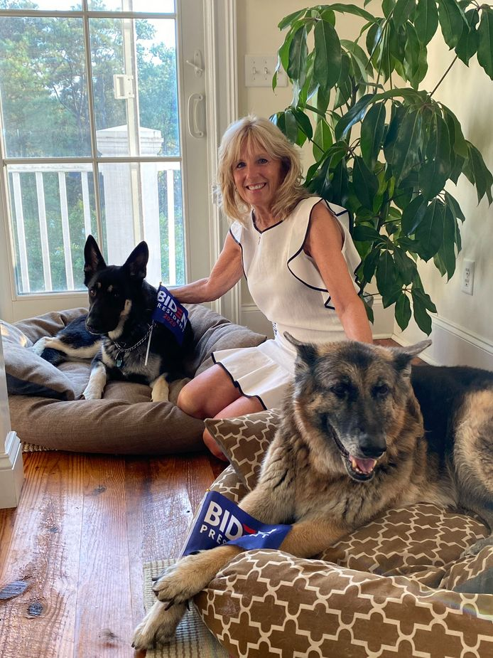 De aanstaande First Lady Jill Biden met de honden Champ en Major