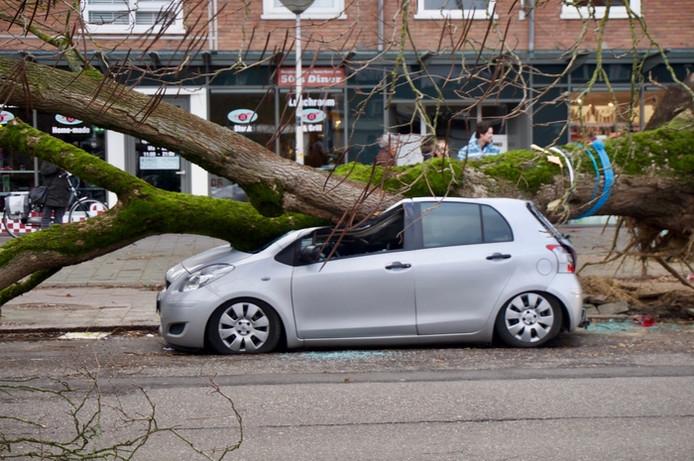 Op de Heezerweg in Eindhoven is een boom op een auto gevallen.
