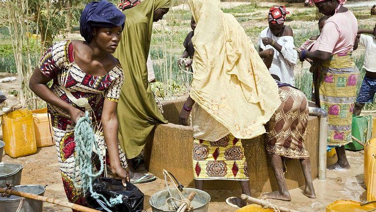 Vrouwen in Niger halen water. Beeld afp