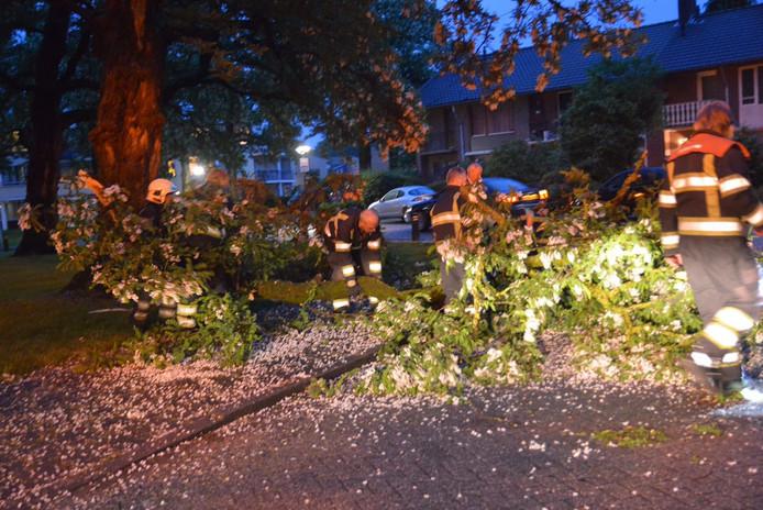 Op het Volmolenplein in Geldrop brak maandagavond een grote tak af van een boom. Niemand raakte gewond en er raakten ook geen auto's beschadigd. De brandweer heeft de tak in stukken gezaagd en verwijderd.
