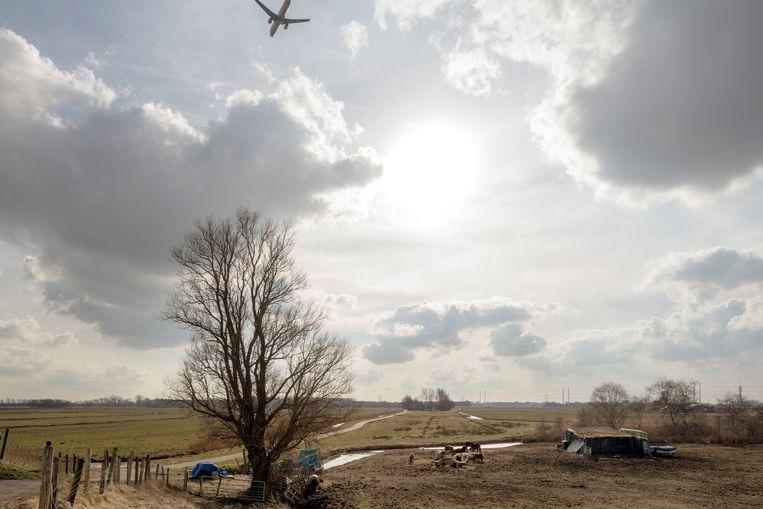 Spaarndammerdijk, Haarlemmermeer. De aanvliegroute naar Schiphol beschermt het open polderlandschap. Beeld Theo Baart
