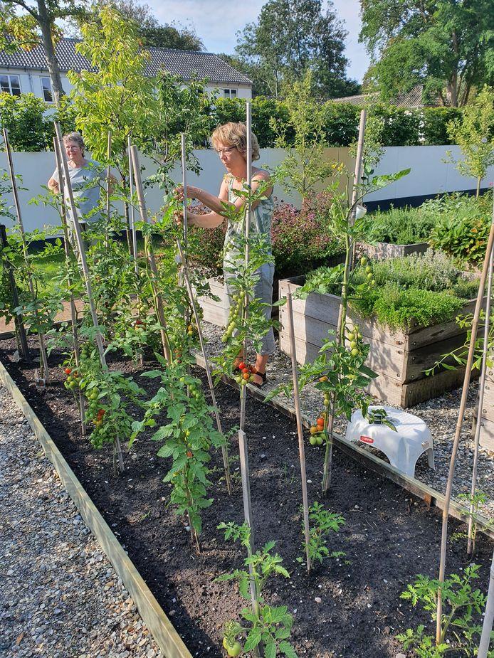 Vrijwilligers aan het werk in tuin Ockenburgh.