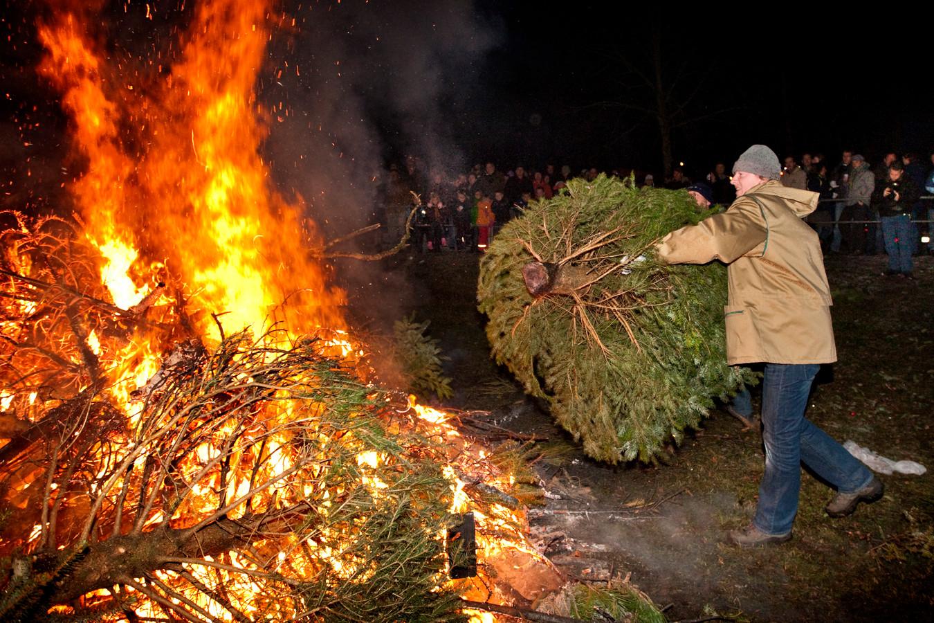 De stapel kerstbomen in Sparrenburg werd elk jaar groter.
