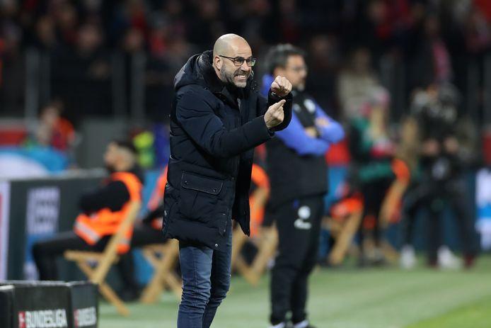 Peter Bosz is trainer van Bayer Leverkusen.