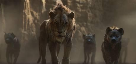 Moonlight-regisseur gaat nóg een liveaction versie van The Lion King maken