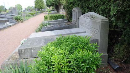 Verboden katten te voederen... op kerkhof