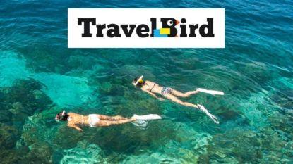 Reisorganisatie TravelBird is failliet
