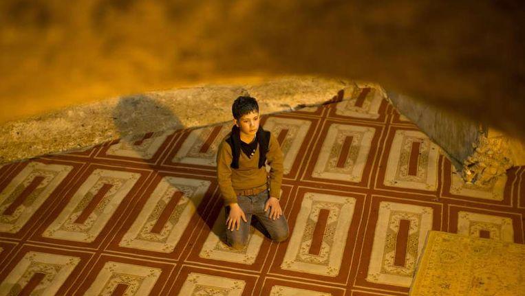 Een moslim bidt in de Rotskoepel in Jeruzalem. Beeld afp