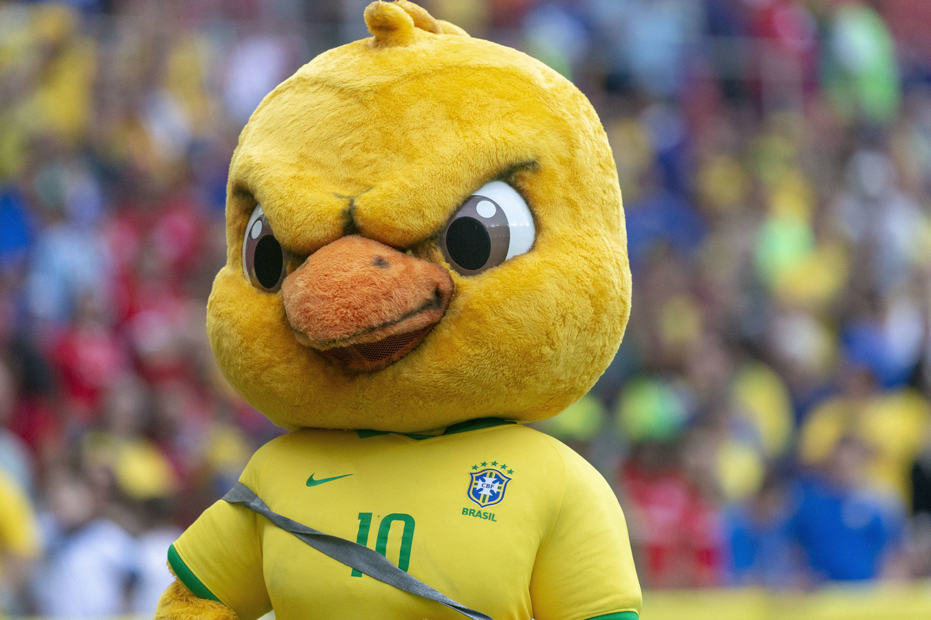De Braziliaanse mascotte.
