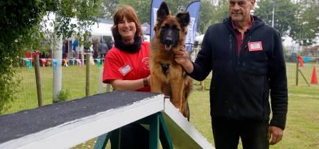 Honden worden gemasseerd en in de watten gelegd op jubileum Country Dogs