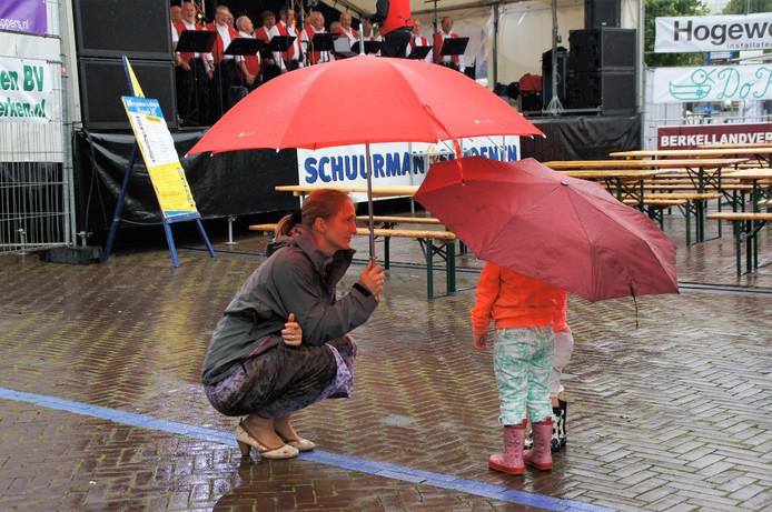 foto gemaakt op25 juni tijdens een van de weerkomm dagen in Borculo. [hele middag regen]