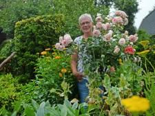 Diny Schepers uit Ruurlo: 'Onze tuin is een uit de hand gelopen hobby'