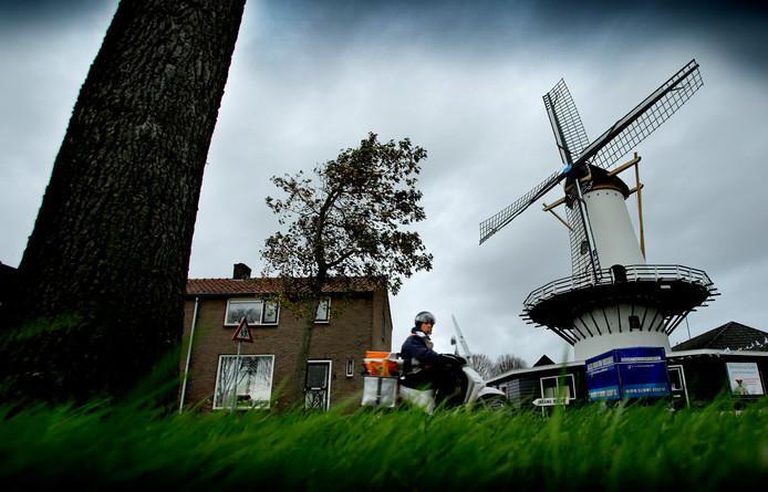 Blijdorp Veevoeders gaat naar de historische molen.