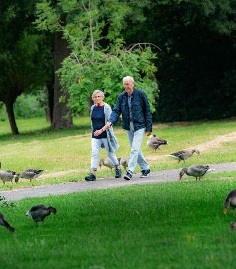 Wijchen stopt met maaien en gaat snoeien op 'broedeilandjes' in strijd tegen ganzen