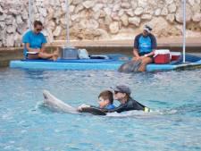 Dolfijntherapie liet Morris (9) uit Oirschot groeien