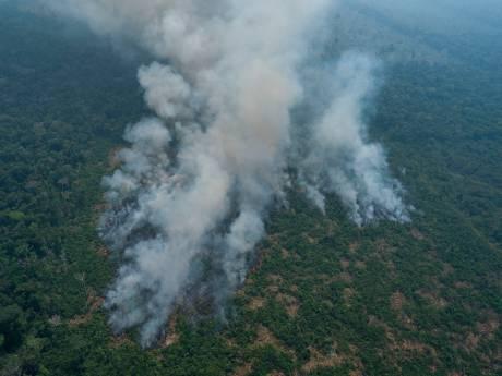 Pourquoi une partie de l'Amazonie brûle-t-elle?