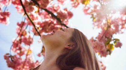 De zon op je snoet: parken en natuur geven je humeur een boost