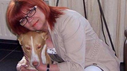 Hond of poes vermist? Bel Bernadette!