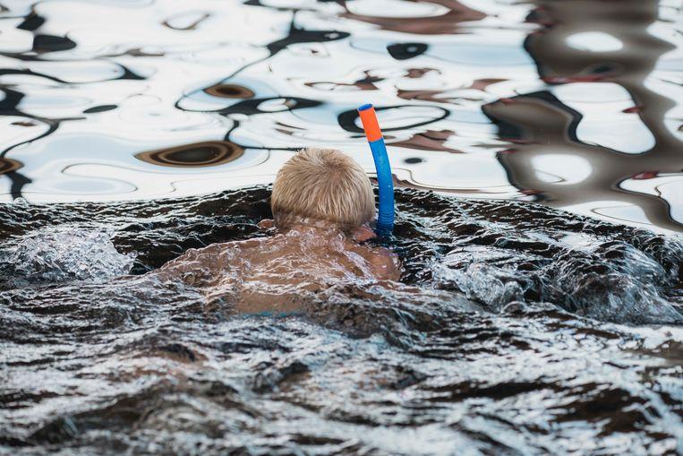 TODI organiseert op 'de warmste dag' een gratis verfrissende plons tussen de vissen.
