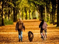 Gooise gemeenten zien meer toeristen uit Nederland