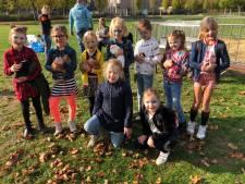 Honderden kinderen doen mee aan Herfstfestijn Zeeland