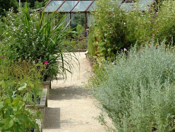 Kies voor een tuin met veel variatie waar het hele jaar rond wat te beleven valt, ook 's winters