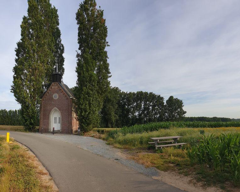 De Steppeskapel in Nederhasselt, waar Natuurpunt Ninove recent een mooie bloemenakker inrichtte.