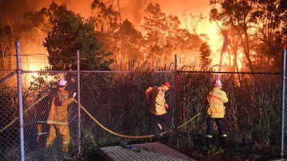 Bosbranden bedreigen huizen rond Sydney