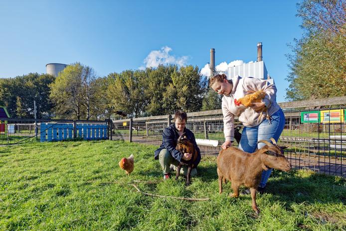 De raad wil niet tornen aan het voortbestaan van kinderboerderij De Kromme Akker in Geertruidenberg.