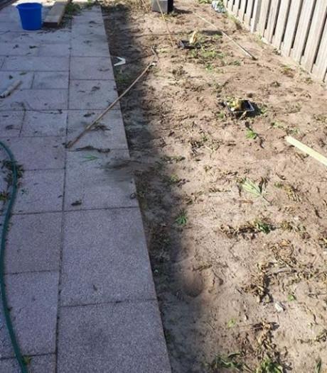 Twee aanhoudingen voor hennepkweek in de achtertuin in Hoogerheide