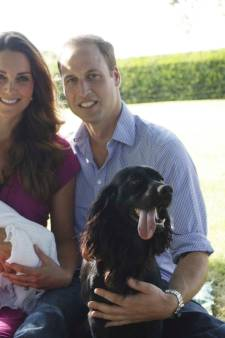 Prins William en gezin moeten na negen jaar afscheid nemen van hond Lupo