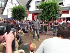'Nog nooit zo druk' bij het schaapscheren in Rheden