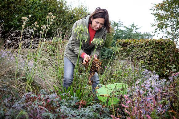Laurence Machiels laat zien hoe je je tuin winterklaar maakt en je tuingerief een onderhoudsbeurt geeft.