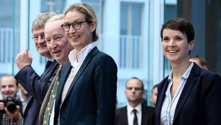 Van links naar rechts: Joerg Meuthen, Alexander Gauland, Alice Weidel en Frauke Petry van het AfD.