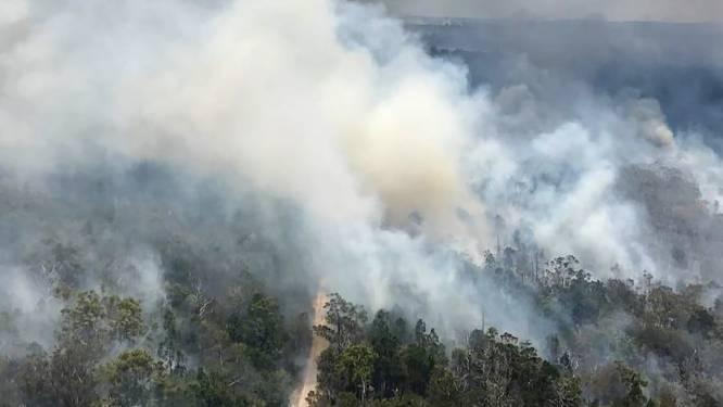 Unesco-werelderfgoed gaat op in rook: Australische Fraser Island verwoest door bosbranden
